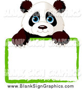 Vector Cartoon Illustration of a Cute Panda Looking over a Blank Sign by Pushkin