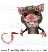 Vector Illustration of a 3d Brown Mouse Character Giving the Thumbs up and Holding a Blank Sign by Julos