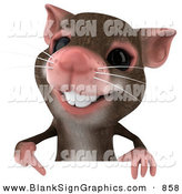 Vector Illustration of a 3d Happy Mouse Character Pointing down to and Holding a Blank Sign by Julos