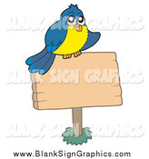 Vector Illustration of a Blue and Yellow Bird on a Blank Wood Sign by Visekart