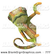 Vector Illustration of a Green Chameleon Lizard Character Looking Around a Blank White Sign by Julos
