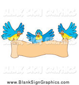 Vector Illustration of a Three Blue and Yellow Birds Flying with a Blank Scroll Banner by Visekart