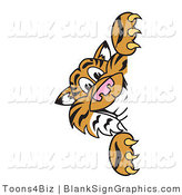 Vector Illustration of a Tiger Looking Around a Blank Sign by Toons4Biz
