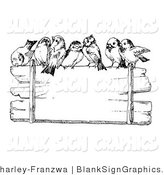 Vector Illustration of Finches Perched on Top of a Blank Wooden Sign by C Charley-Franzwa